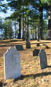 picture$120 (1)Old pine tree cemetery